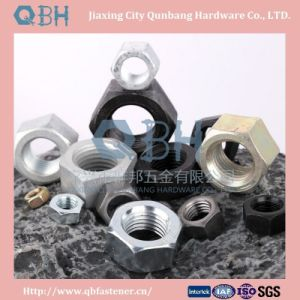 Hex Nuts (ANSI B18.2.4.1m with Carbon Steel) pictures & photos