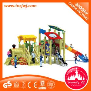 Outdoor Kindergarten School Wooden Commercial Playground Equipment pictures & photos