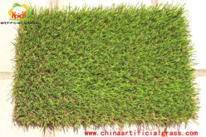 Competitive Priced and Natural Realistic Appearance Artificial Grass pictures & photos
