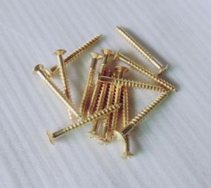 Gold Color Bolt on Guitar Neck Joint Screws pictures & photos