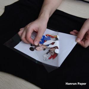 Eco Solvent Heat Transfer Paper/Vinyl/Film for Garment on Roland Printer