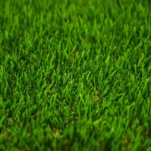 High Quality Artificial Grass for Landscape (ES) pictures & photos