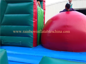 Inflatable Running Ball Game, Inflatable Games pictures & photos