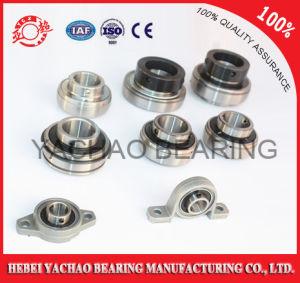 China Ycz Chrome Steel Pillow Block Bearing (Uc204 Ucp204 Ucf204 Ucfl204 Uct204)