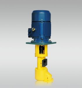 Immersion Type Screw Pump pictures & photos