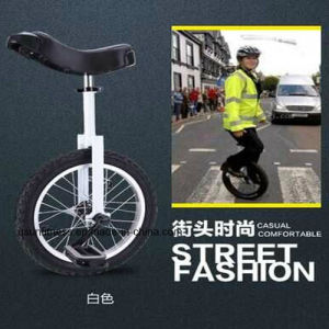 Unicycle Exercise Bike with Cheap Price pictures & photos
