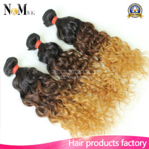 Top Quality Remy Hair Brazilian Hair Extension Kinky Curly Ombre Hair pictures & photos