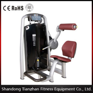 Commercial Fitness Equipment Tz-6006/Top Quality Gym Machine / Back Extension pictures & photos