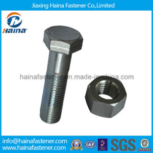 Zinc Plated Hex Bolt, Stainless Steel Hex Bolts & Nuts pictures & photos