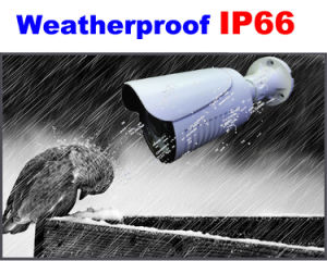 3.0 Megapixel IP 30m IR Color Waterproof Camera pictures & photos