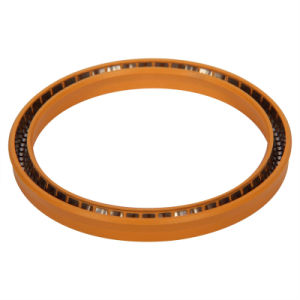 High Quality Spring Energized Seals for Engine Parts pictures & photos