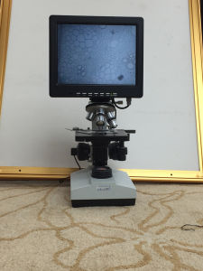 10 Inch Screen Microscope Digital and Electric for Research Shd2320 pictures & photos