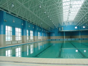 Space Frame Swimming Pool Roof pictures & photos