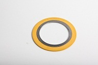 Spiral Wound Gasket with Outer Ring (RS1-CG) pictures & photos