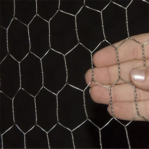 Hot Seling Galvanized Hexagonal Wire Mesh for Breeding Chicken pictures & photos