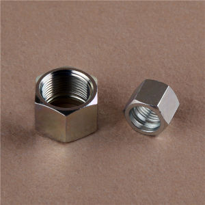 Orfs Male Flat/ Bsp O-Ring Seal Nut Hydraulic Fitting pictures & photos