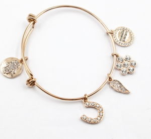 Gold Plating Stainless Steel Bracelet with Charms pictures & photos