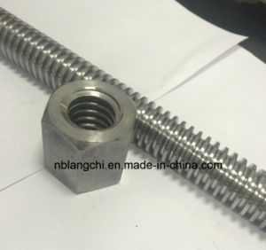 Trapezoidal Thread Acme Rod Lead Screw with Hex Nuts Tr30X6 pictures & photos