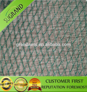 Bird Trapping Net Eco-Friendly Feature Bird Netting pictures & photos