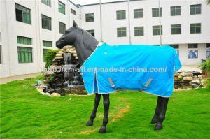 600d Resist Tearing Waterproof Turnout Horse Blanket pictures & photos