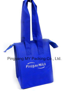 Non Woven Zipper Bottle Cooler Bag Promotional Picnic Bag pictures & photos