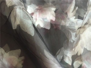 Silk Organza Satin Fabric pictures & photos
