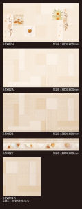 Hoe Sale Ceramic Floor Tile with Special Designs pictures & photos