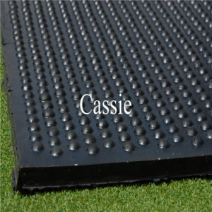 Cheaper Rubber Floor Mat/Rubber Cow Stable Mat/Rubber Stable Mat pictures & photos