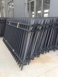High Quality Proximate Matter of Fence/Railing/Handrail