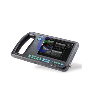 Mc-3000V Portable Veterinary Ultrasound Scanner pictures & photos