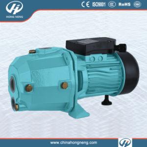 Self Priming Deep Well Pump (JETDP)