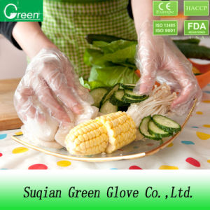 Selling Products PE/TPE/CPE Food Plastic Gloves pictures & photos