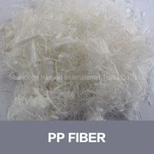 Dry Construction Mixture Concrete PP Fiber pictures & photos