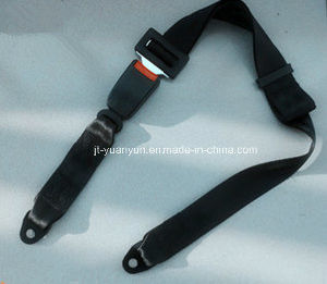 Universal 2-Point Simple Seat Belt pictures & photos
