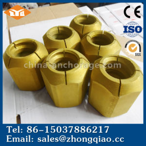 Round Wedge Nut Anchor Bolt for Bridge Construction pictures & photos