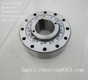 Sprag Type Freewheel Cam Overrunning Backstop Clutch Rsci130 pictures & photos