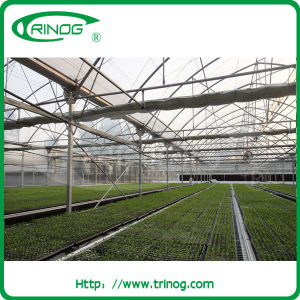 Multi-Span Film Greenhouse with inner shading system pictures & photos