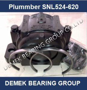 SKF Plummer Block Bearing Snl524-620 pictures & photos