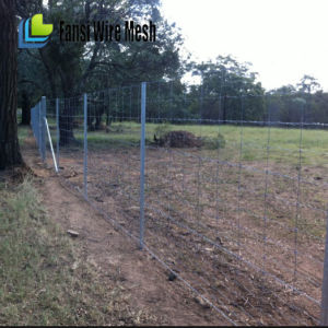 7/90/30 Cattle Fence for Australia Market pictures & photos
