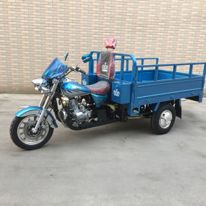 China Wholesale Adult Tricycles Mtr with High Quality and Cargo Tricycle of Beautiful Appearance pictures & photos