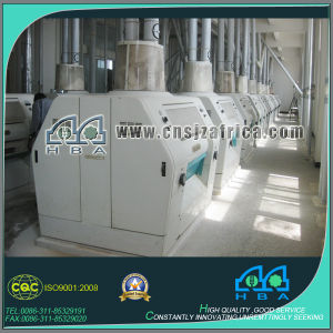 Export 50t/24hours Wheat Flour Milling Machines Europe Standard pictures & photos