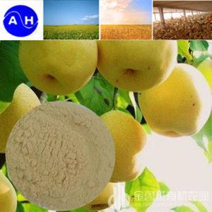 Enzymatic Amino Acid Compound Fertilizer pictures & photos