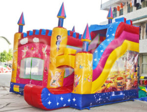 Spirit Themed Inflatable Bouncer with Slide Factory Supply (CHB206) pictures & photos