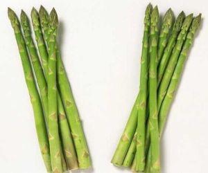 Asparagus Sprengeri Extract Powder pictures & photos