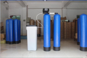 Chunke 1t/H Water Softener Salt Water Purifier/Water Purifying Equipment pictures & photos
