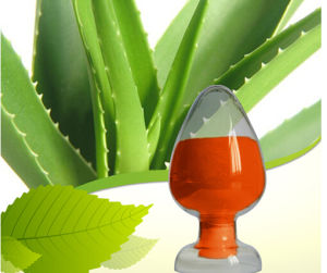 Factory Supply Natural Aloe Extract 20%-98% Aloin pictures & photos