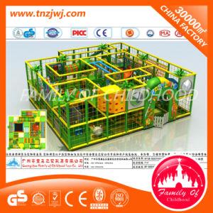 Amusement Park Indoor Playground Plastic Children Toy pictures & photos
