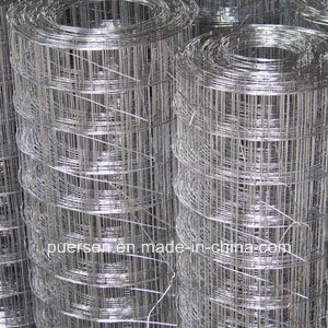 Top Quality Galvanized Spot Welded Wire Mesh in Rolls pictures & photos