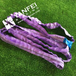 1ton Violet Polyester Endless Round Sling pictures & photos