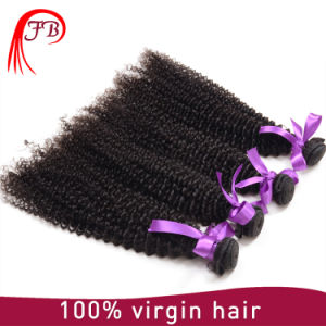 Wholesale Hair Bundle 100% Human Hair Extension Curly Indian Hair pictures & photos